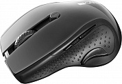 Мышь CANYON CNS-CMSW01B Black pearl glossy USB {wireless mouse, optical tracking - blue LED, 2.4Ghz, 6 buttons, DPI 1000/1200/1600}